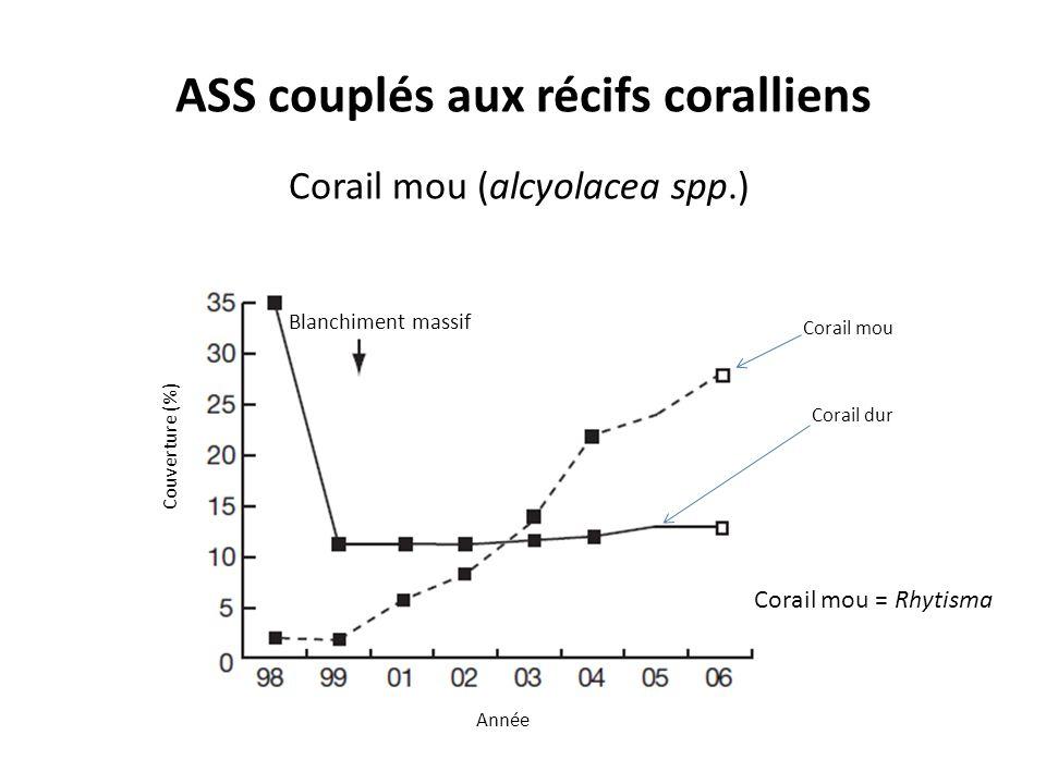 ASS couplés aux récifs coralliens Corail mou (alcyolacea spp.) Couverture (%) Année Blanchiment massif Corail mou Corail dur Corail mou = Rhytisma