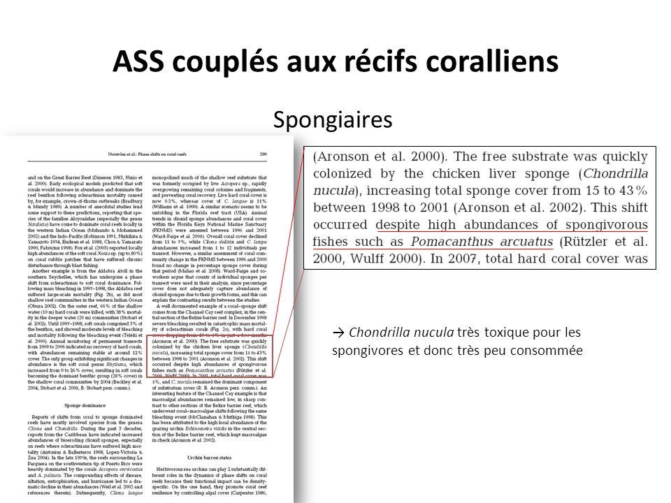 ASS couplés aux récifs coralliens Spongiaires Chondrilla nucula très toxique pour les spongivores et donc très peu consommée