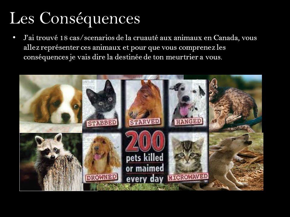 Les Conséquences Jai trouvé 18 cas/scenarios de la cruauté aux animaux en Canada, vous allez représenter ces animaux et pour que vous comprenez les co