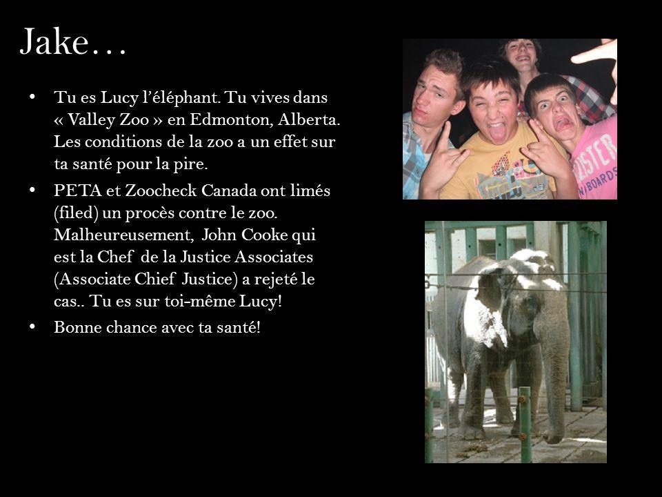 Jake… Tu es Lucy léléphant. Tu vives dans « Valley Zoo » en Edmonton, Alberta. Les conditions de la zoo a un effet sur ta santé pour la pire. PETA et