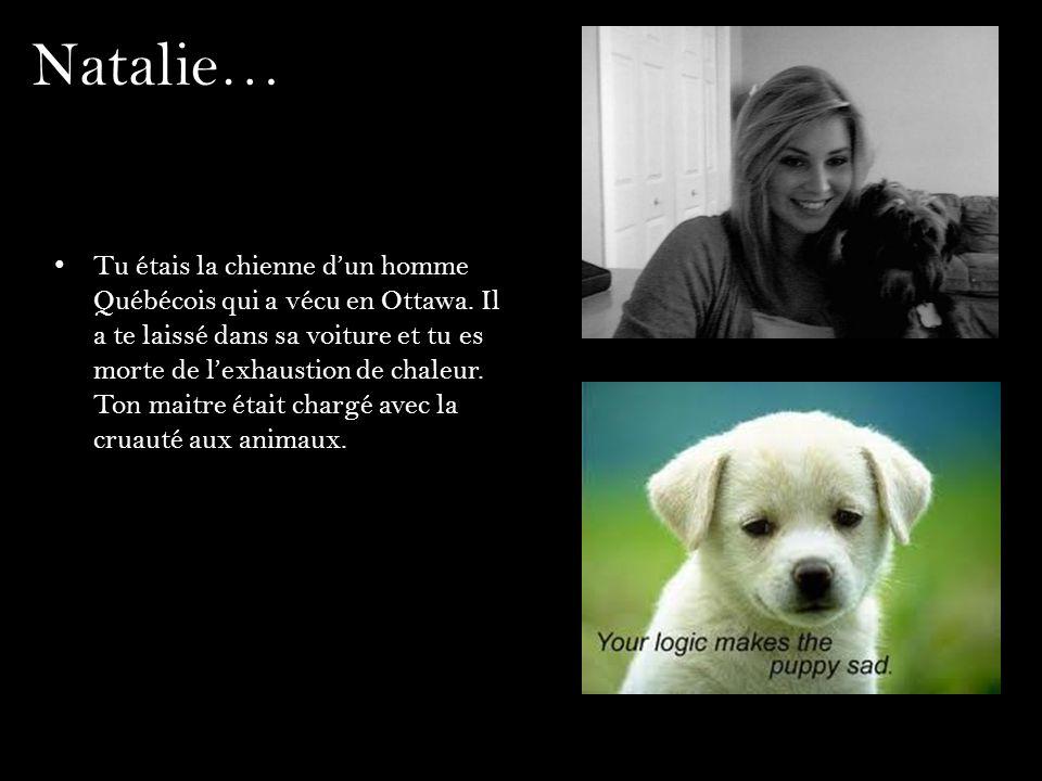 Natalie… Tu étais la chienne dun homme Québécois qui a vécu en Ottawa. Il a te laissé dans sa voiture et tu es morte de lexhaustion de chaleur. Ton ma