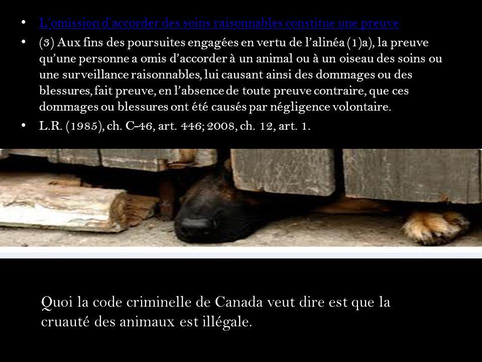 Les Conséquences Jai trouvé 18 cas/scenarios de la cruauté aux animaux en Canada, vous allez représenter ces animaux et pour que vous comprenez les conséquences je vais dire la destinée de ton meurtrier a vous.