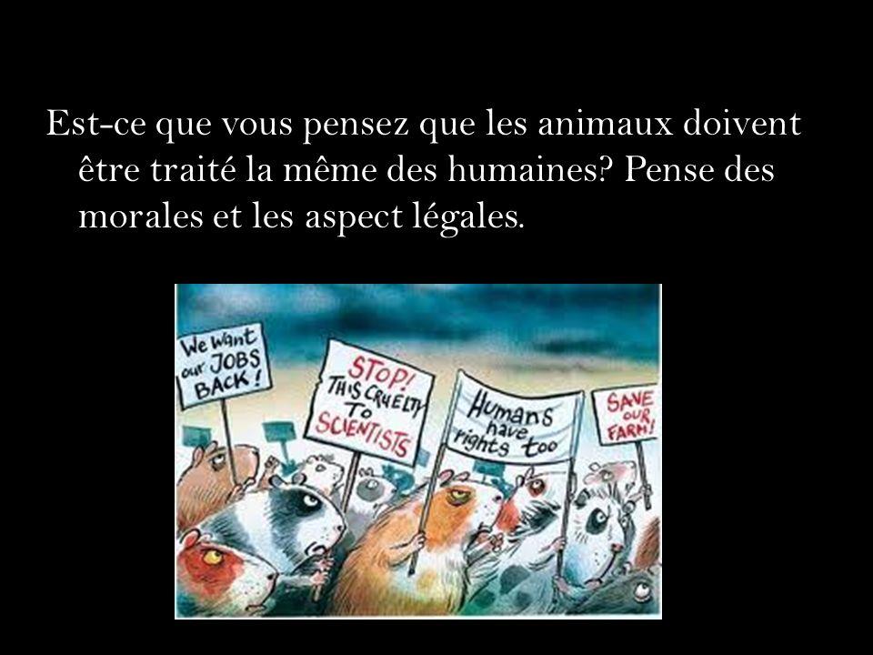 Est-ce que vous pensez que les animaux doivent être traité la même des humaines? Pense des morales et les aspect légales.