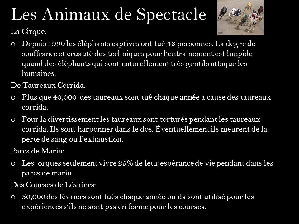 Votre Opinion… En Canada la cruauté des animaux est illégale.