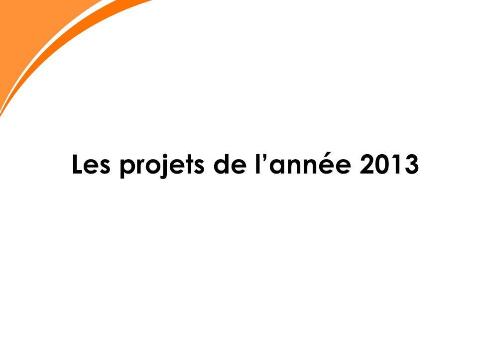 Les projets de lannée 2013