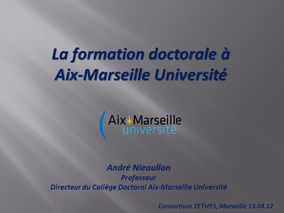 La formation doctorale à Aix-Marseille Université André Nieoullon Professeur Directeur du Collège Doctoral Aix-Marseille Université Consortium TETHYS, Marseille 13.04.12
