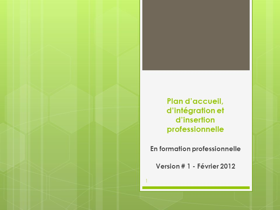 Plan daccueil, dintégration et dinsertion professionnelle En formation professionnelle Version # 1 - Février 2012 1