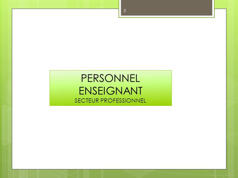 PERSONNEL ENSEIGNANT SECTEUR PROFESSIONNEL 3