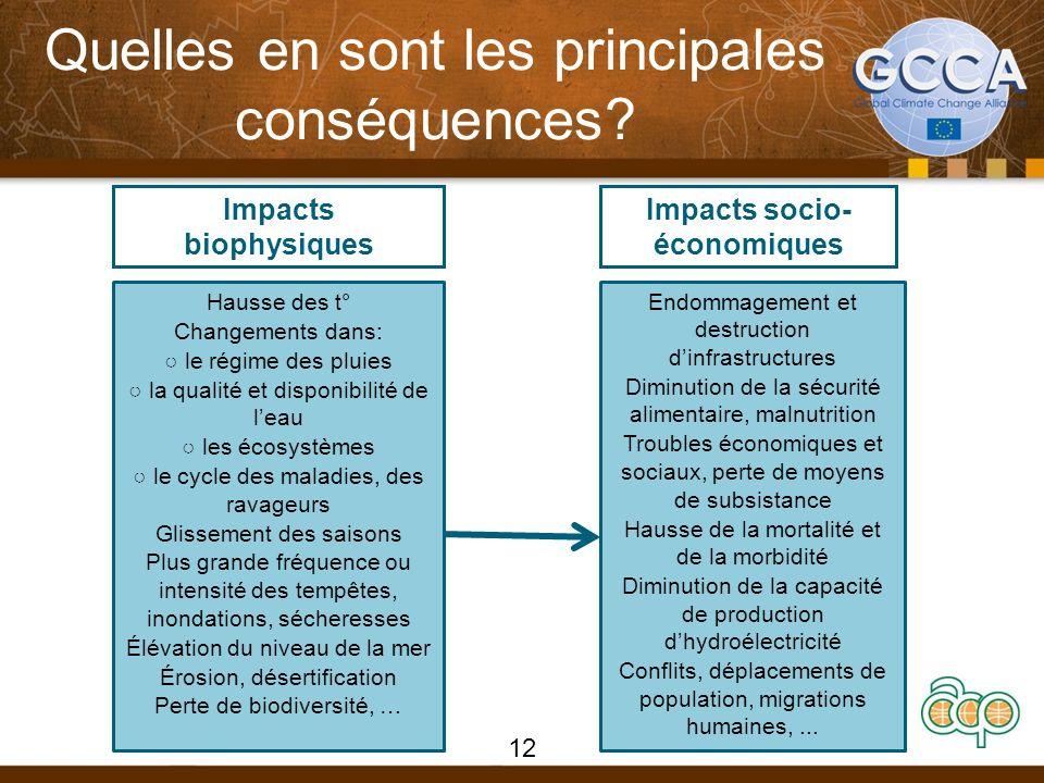 Quelles en sont les principales conséquences? Impacts biophysiques Hausse des t° Changements dans: le régime des pluies la qualité et disponibilité de