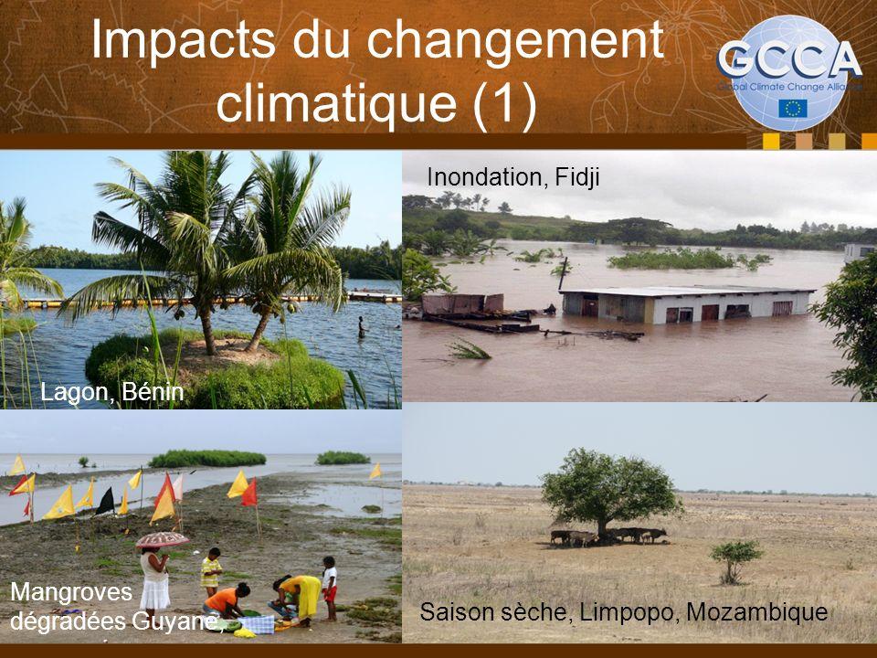 Impacts du changement climatique (1) Inondation, Fidji Saison sèche, Limpopo, Mozambique Lagon, Bénin Mangroves dégradées Guyane,