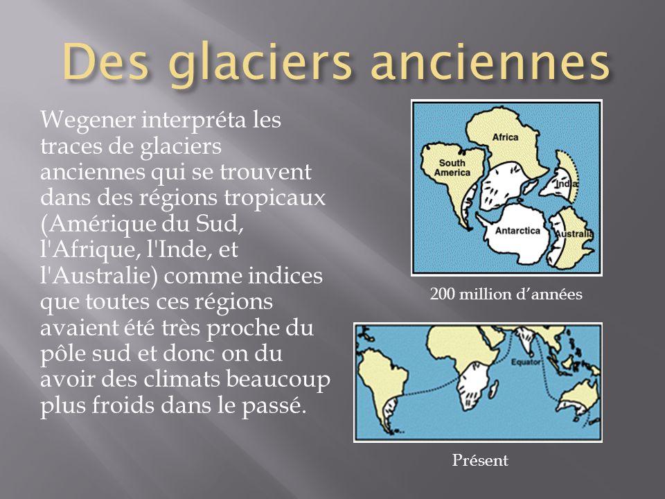 Des glaciers anciennes Wegener interpréta les traces de glaciers anciennes qui se trouvent dans des régions tropicaux (Amérique du Sud, l'Afrique, l'I
