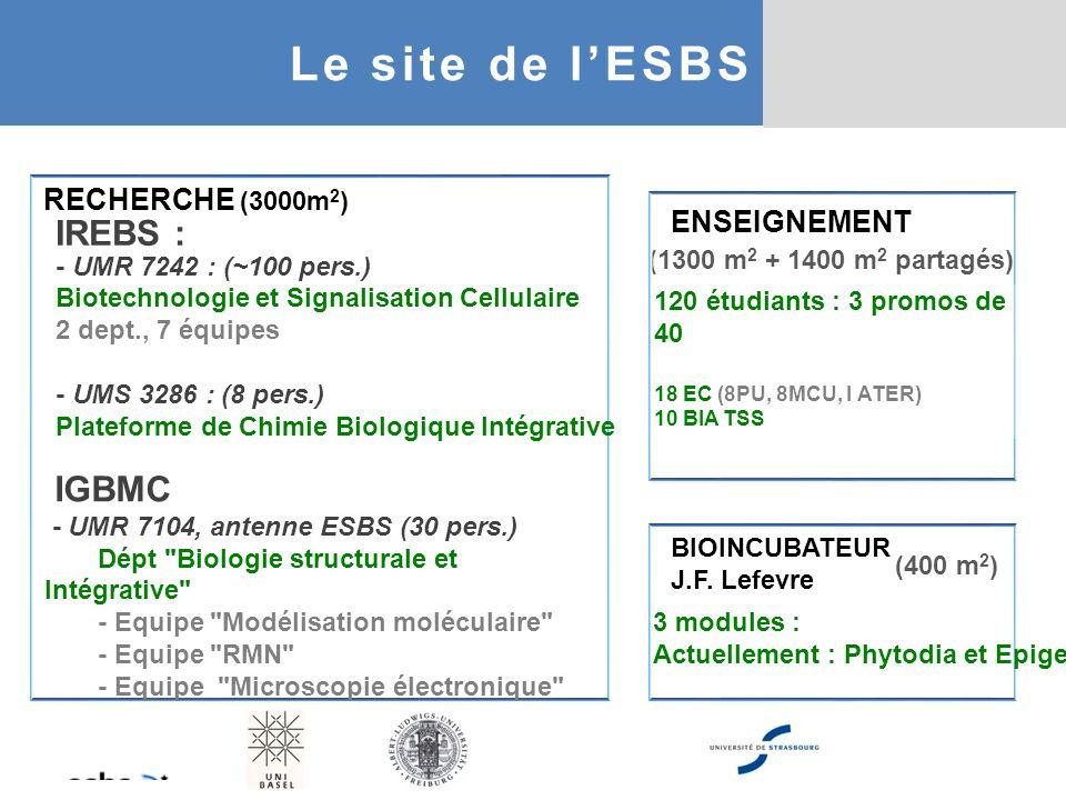 (1300 m 2 + 1400 m 2 partagés) ENSEIGNEMENT (400 m 2 ) RECHERCHE (3000m 2 ) IGBMC - UMR 7104, antenne ESBS (30 pers.) Dépt