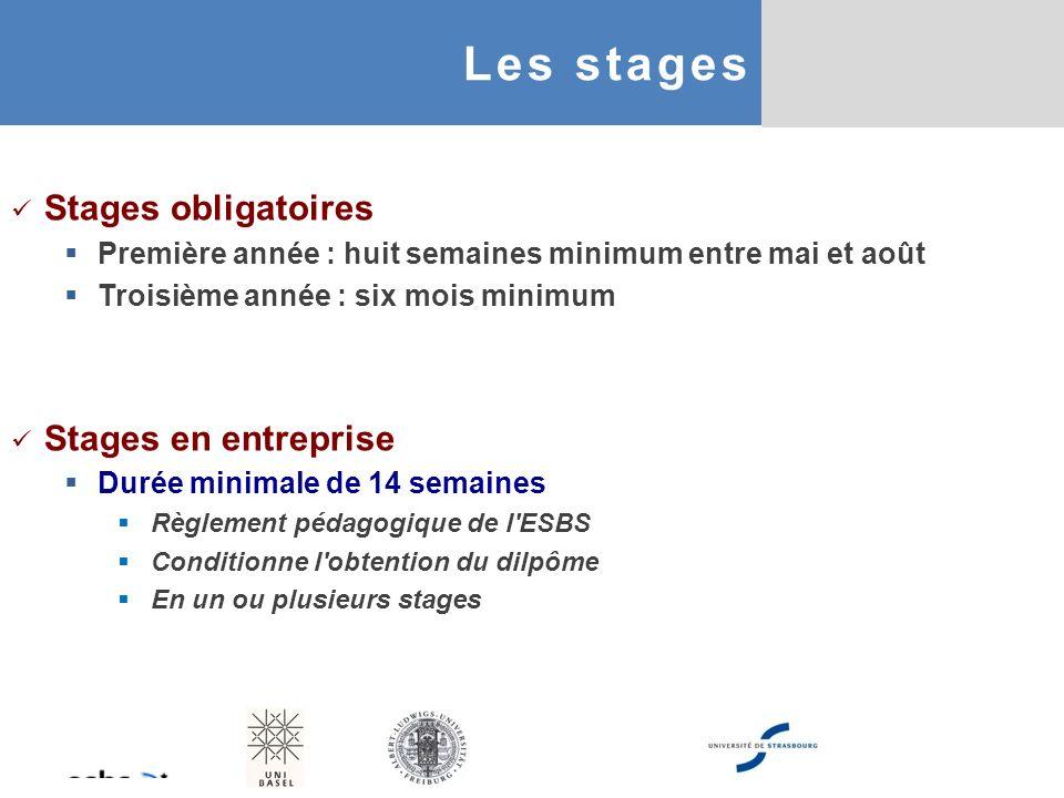 Stages obligatoires Première année : huit semaines minimum entre mai et août Troisième année : six mois minimum Stages en entreprise Durée minimale de