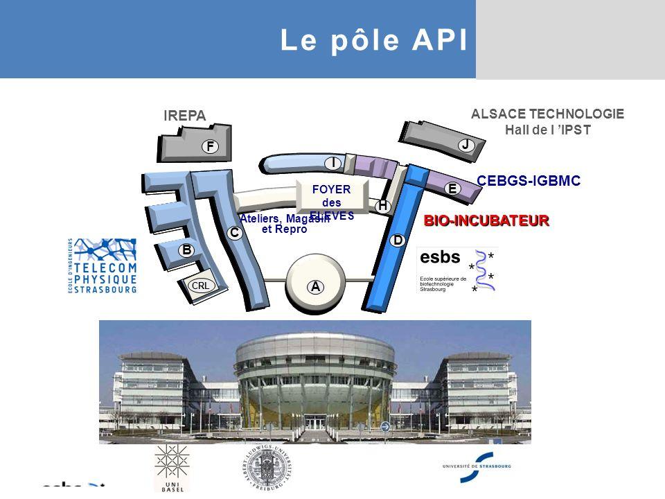 (1300 m 2 + 1400 m 2 partagés) ENSEIGNEMENT (400 m 2 ) RECHERCHE (3000m 2 ) IGBMC - UMR 7104, antenne ESBS (30 pers.) Dépt Biologie structurale et Intégrative - Equipe Modélisation moléculaire - Equipe RMN - Equipe Microscopie électronique IREBS : - UMR 7242 : (~100 pers.) Biotechnologie et Signalisation Cellulaire 2 dept., 7 équipes - UMS 3286 : (8 pers.) Plateforme de Chimie Biologique Intégrative 3 modules : Actuellement : Phytodia et Epigex 120 étudiants : 3 promos de 40 18 EC (8PU, 8MCU, I ATER) 10 BIA TSS BIOINCUBATEUR J.F.
