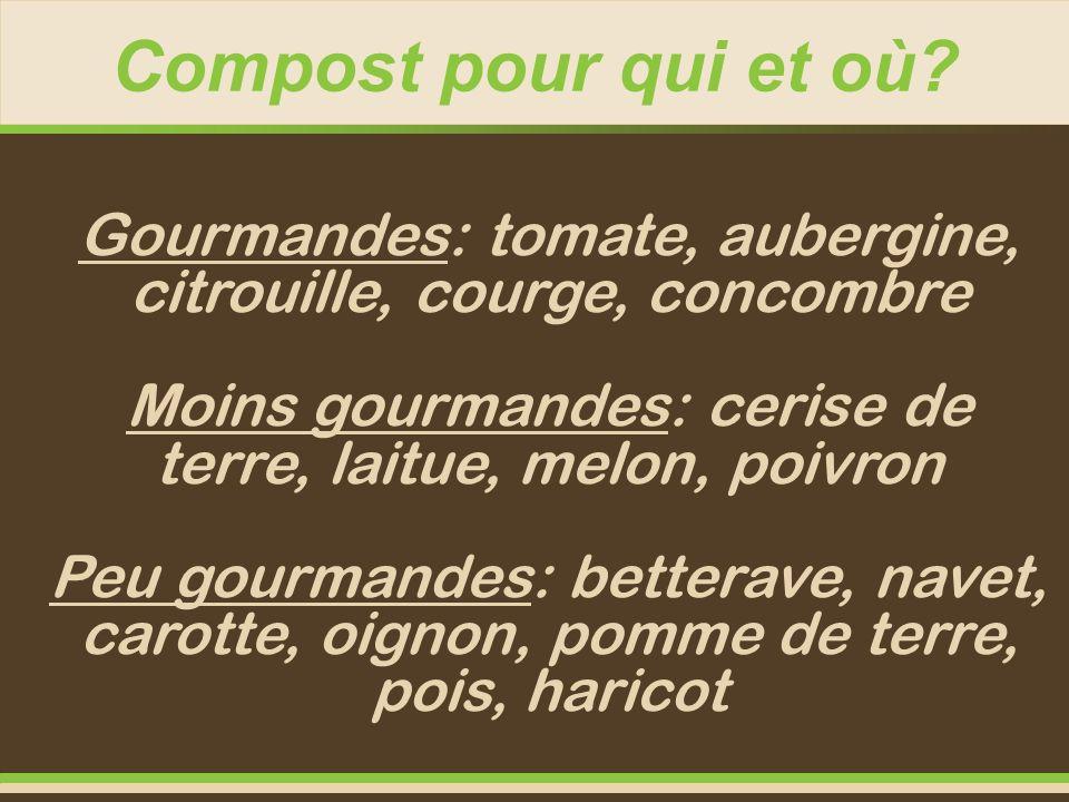 Compost pour qui et où? Gourmandes: tomate, aubergine, citrouille, courge, concombre Moins gourmandes: cerise de terre, laitue, melon, poivron Peu gou