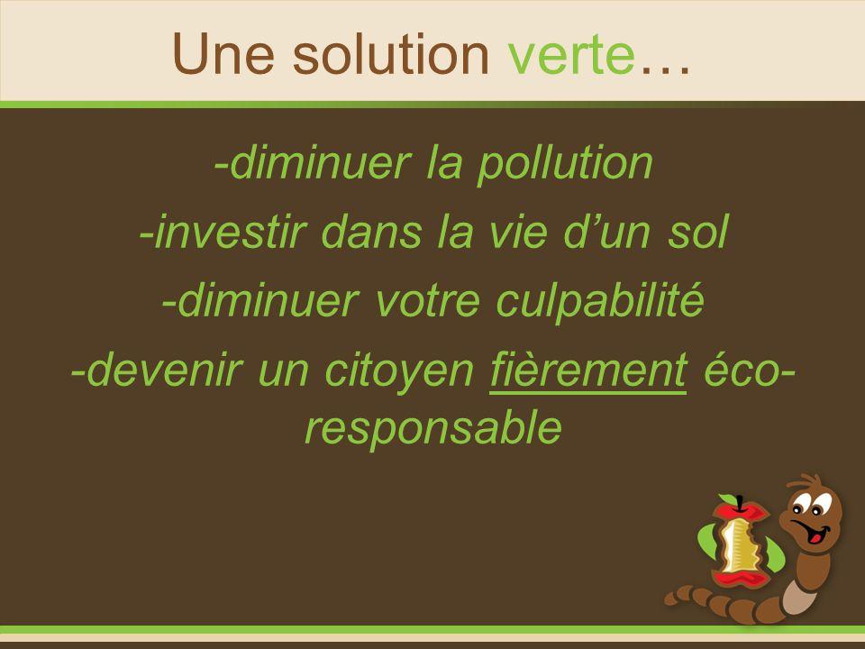 Une solution verte… -diminuer la pollution -investir dans la vie dun sol -diminuer votre culpabilité -devenir un citoyen fièrement éco- responsable