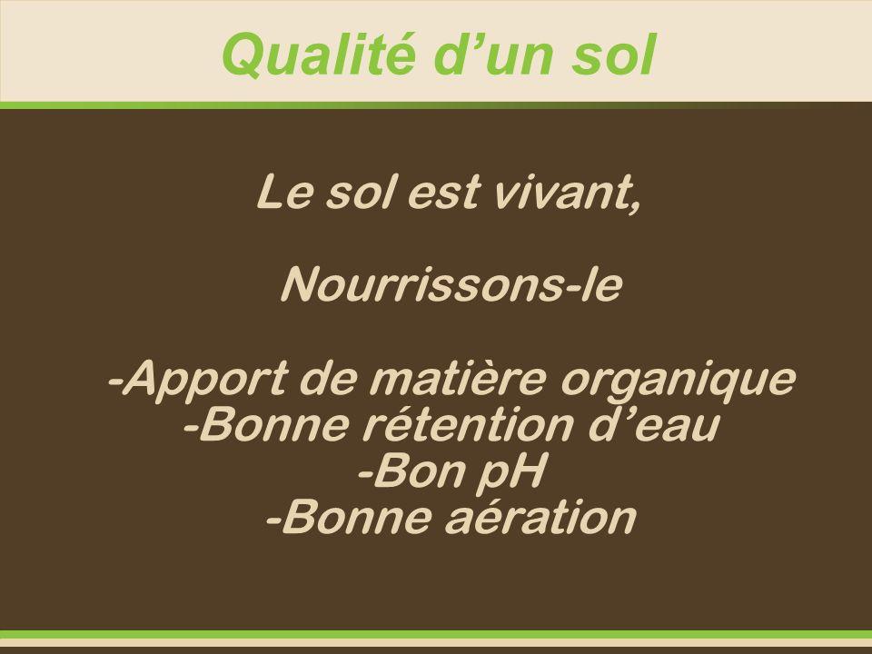 Qualité dun sol Le sol est vivant, Nourrissons-le -Apport de matière organique -Bonne rétention deau -Bon pH -Bonne aération