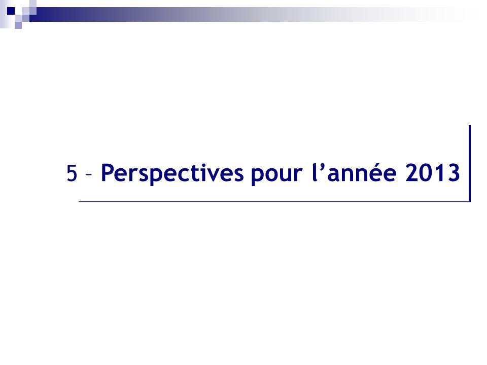 5 – Perspectives pour lannée 2013