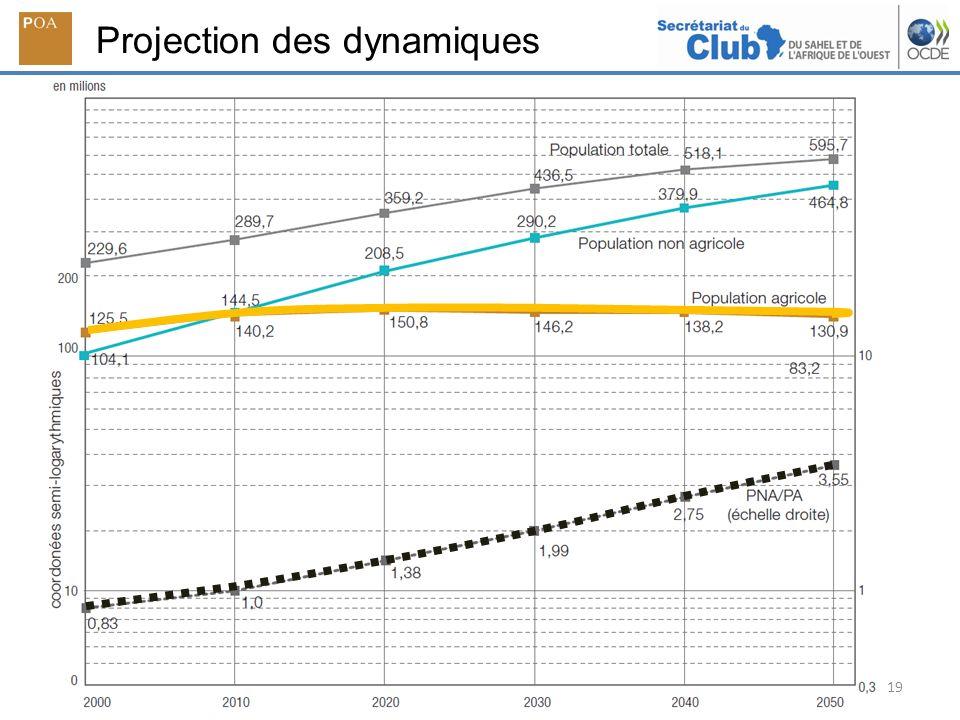 19 Projection des dynamiques