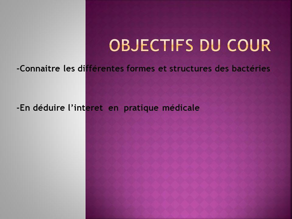 Interface de la bactérie avec le milieux extérieur.