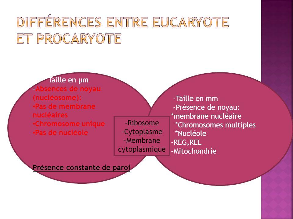 Structure complexe de nature protéique, unique ou multiple, polaire ou non.