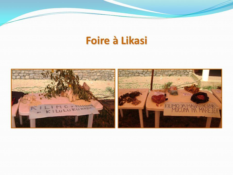 Foire à Likasi