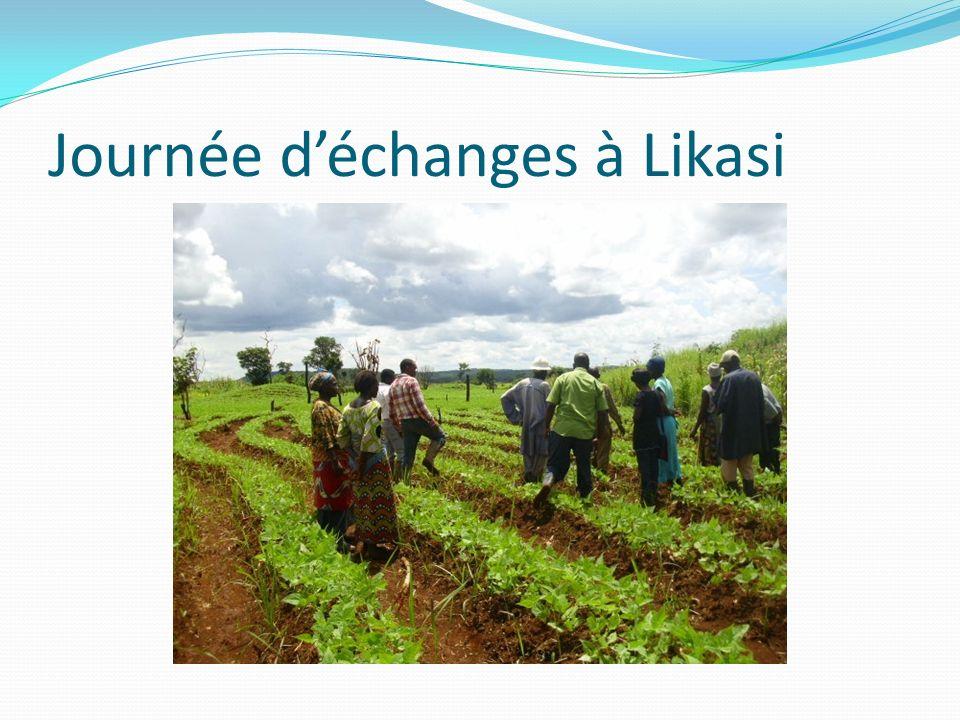 Journée déchanges à Likasi