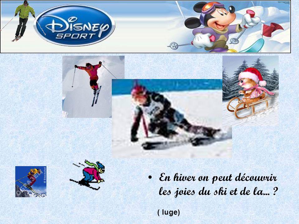 En hiver on peut découvrir les joies du ski et de la... ( luge)