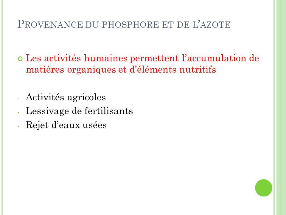P ROVENANCE DU PHOSPHORE ET DE L AZOTE Les activités humaines permettent laccumulation de matières organiques et déléments nutritifs - Activités agric