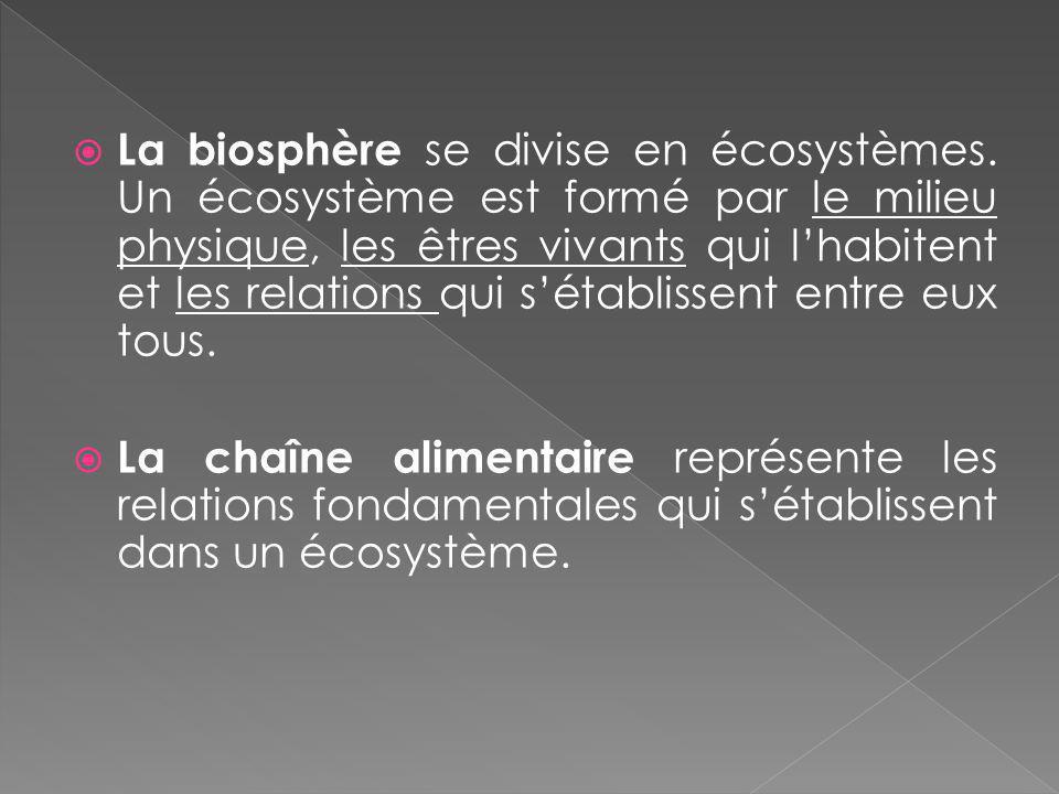 La biosphère se divise en écosystèmes. Un écosystème est formé par le milieu physique, les êtres vivants qui lhabitent et les relations qui sétablisse