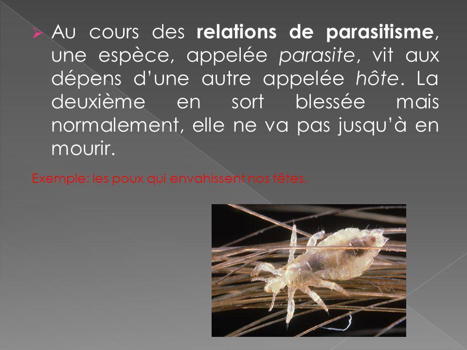 Au cours des relations de parasitisme, une espèce, appelée parasite, vit aux dépens dune autre appelée hôte. La deuxième en sort blessée mais normalem