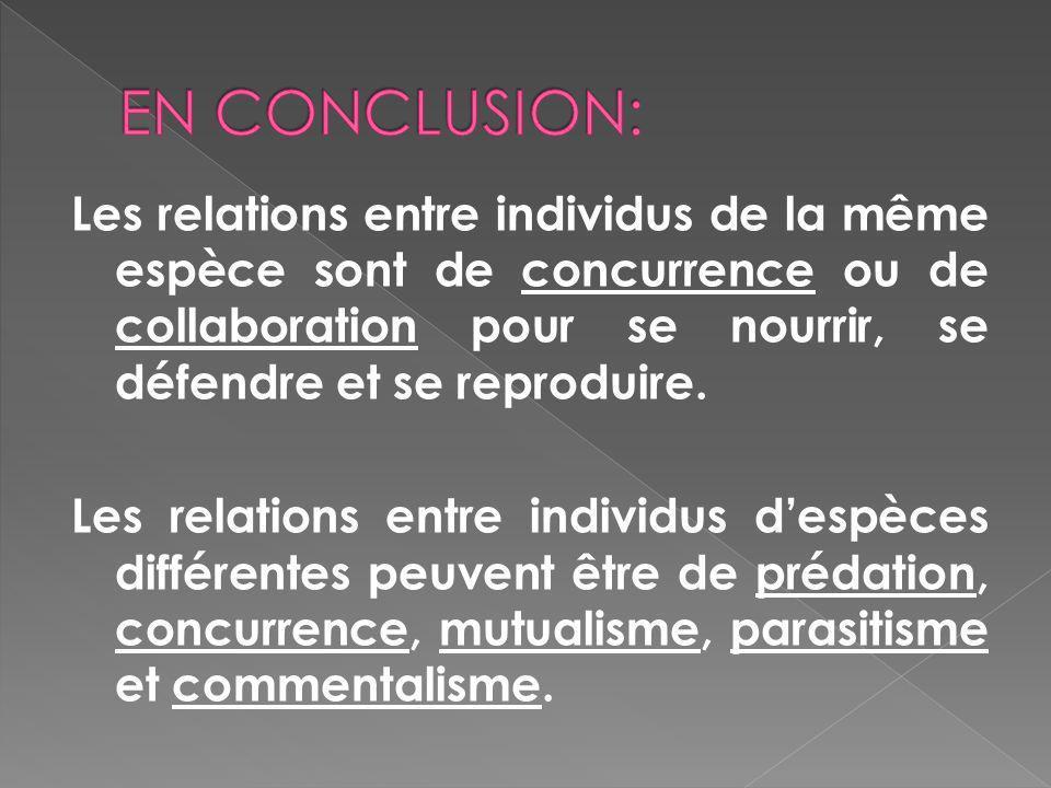 Les relations entre individus de la même espèce sont de concurrence ou de collaboration pour se nourrir, se défendre et se reproduire. Les relations e