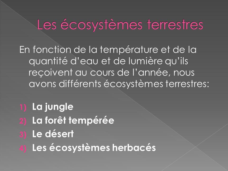 En fonction de la température et de la quantité deau et de lumière quils reçoivent au cours de lannée, nous avons différents écosystèmes terrestres: 1