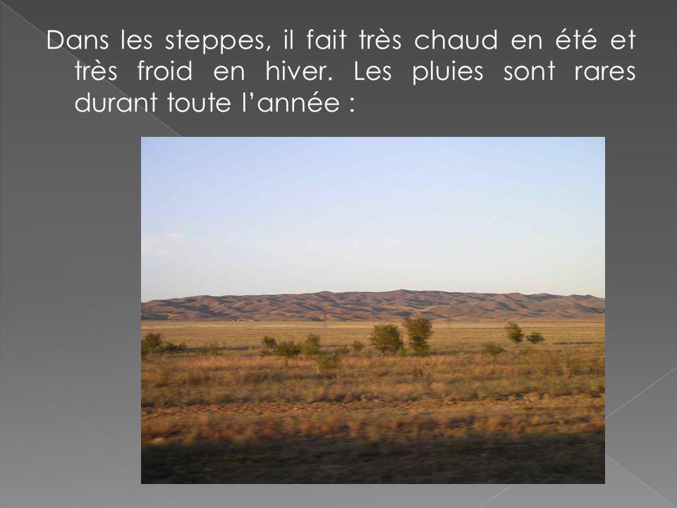 Dans les steppes, il fait très chaud en été et très froid en hiver. Les pluies sont rares durant toute lannée :