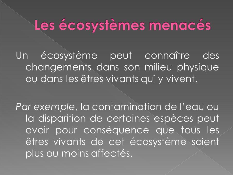 Un écosystème peut connaître des changements dans son milieu physique ou dans les êtres vivants qui y vivent. Par exemple, la contamination de leau ou