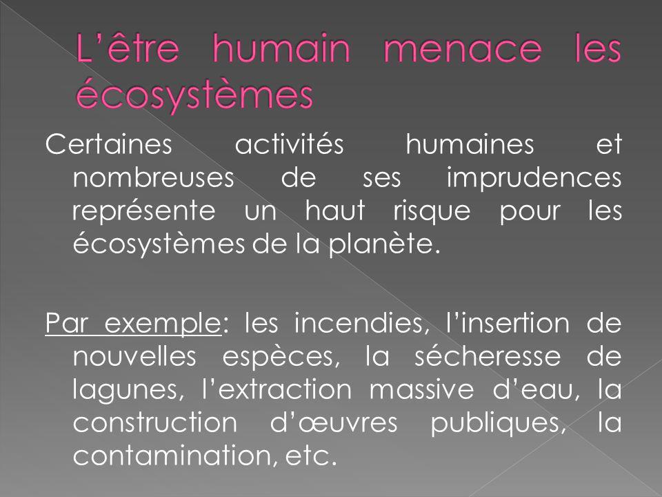 Certaines activités humaines et nombreuses de ses imprudences représente un haut risque pour les écosystèmes de la planète. Par exemple: les incendies