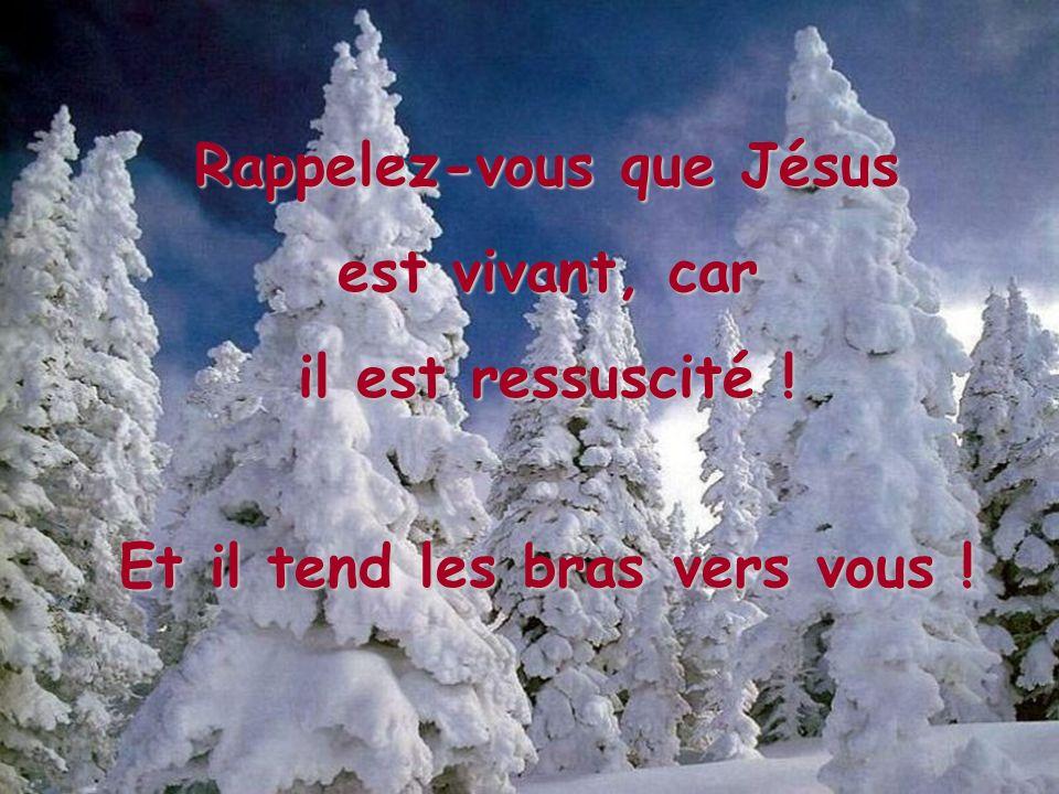 Jésus a dit: Je suis le chemin, la vérité et la vie. Nul ne vient au Père que par moi. (Jean 14,6) Car Dieu a tant aimé le monde qu'il a donné son Fil