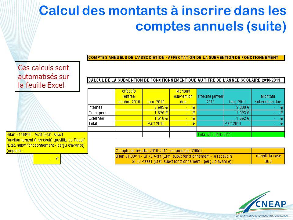 Calcul des montants à inscrire dans les comptes annuels (suite) Ces calculs sont automatisés sur la feuille Excel
