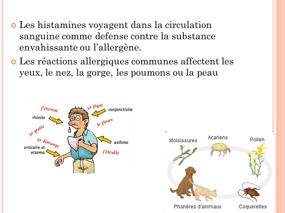 Les histamines voyagent dans la circulation sanguine comme defense contre la substance envahissante ou lallergène. Les réactions allergiques communes