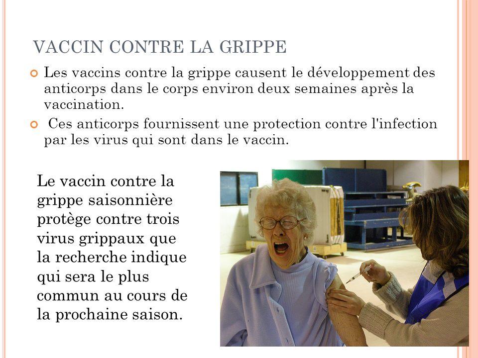 VACCIN CONTRE LA GRIPPE Les vaccins contre la grippe causent le développement des anticorps dans le corps environ deux semaines après la vaccination.