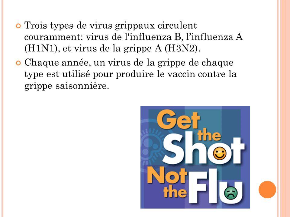 Trois types de virus grippaux circulent couramment: virus de l'influenza B, linfluenza A (H1N1), et virus de la grippe A (H3N2). Chaque année, un viru