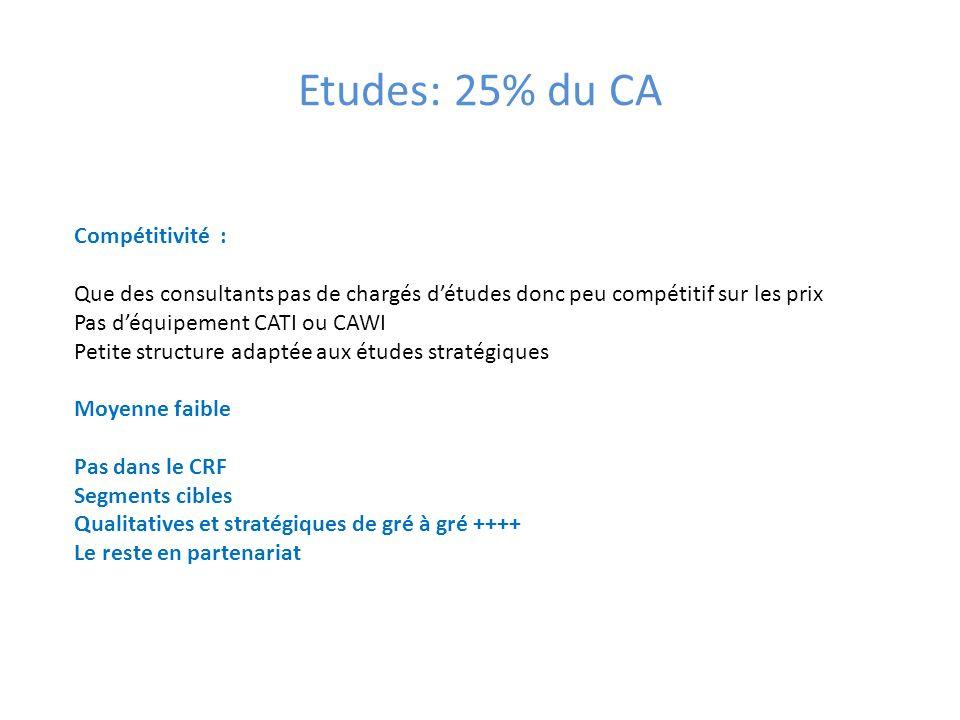 Etudes: 25% du CA Compétitivité : Que des consultants pas de chargés détudes donc peu compétitif sur les prix Pas déquipement CATI ou CAWI Petite stru