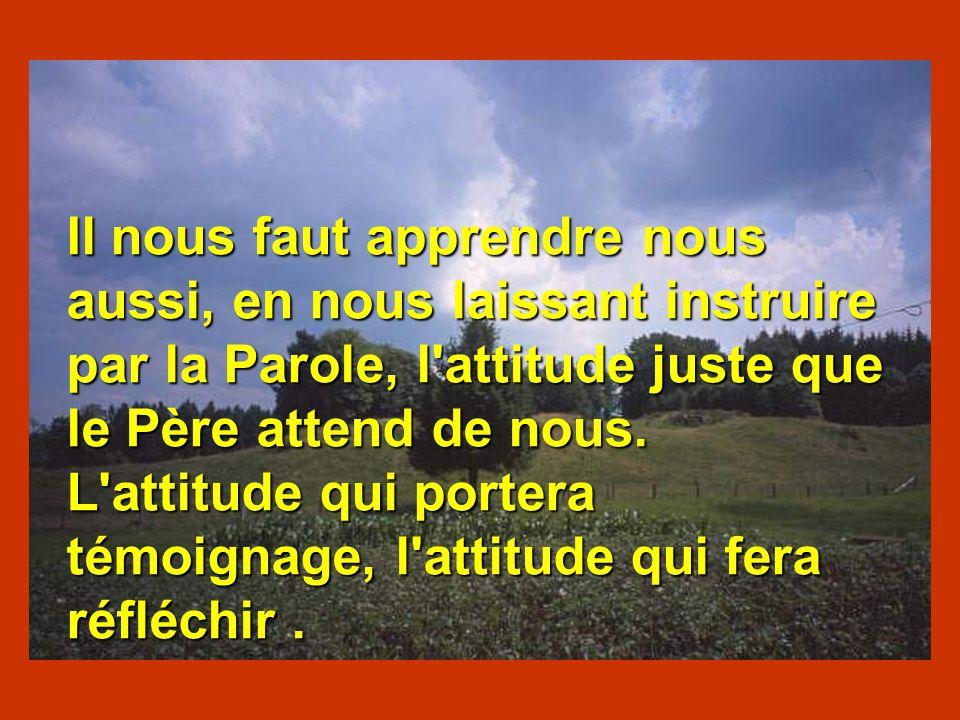 Il nous faut apprendre nous aussi, en nous laissant instruire par la Parole, l'attitude juste que le Père attend de nous. L'attitude qui portera témoi