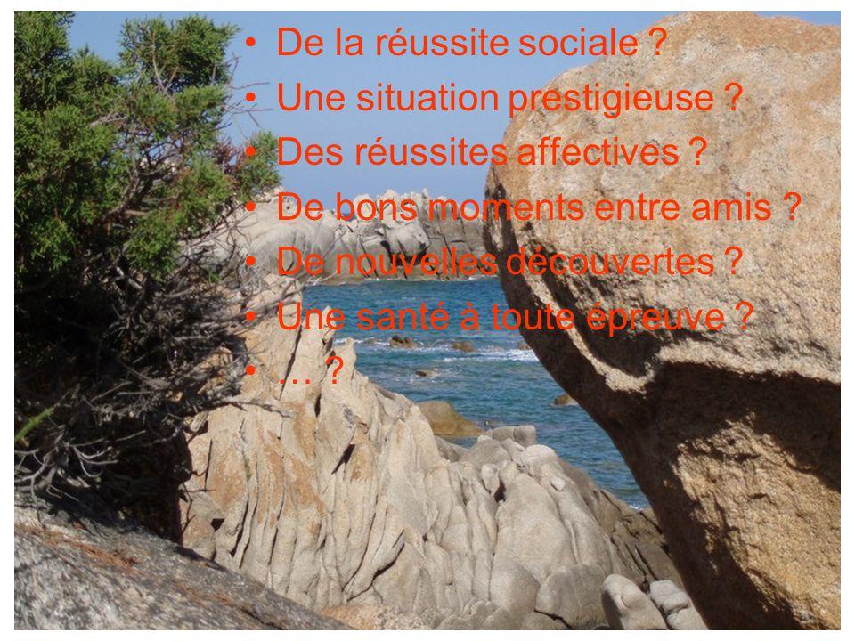 De la réussite sociale ? Une situation prestigieuse ? Des réussites affectives ? De bons moments entre amis ? De nouvelles découvertes ? Une santé à t