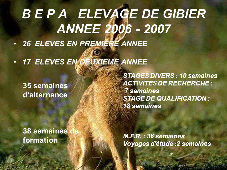 B E P A ELEVAGE DE GIBIER ANNEE 2006 - 2007 26 ELEVES EN PREMIERE ANNEE 17 ELEVES EN DEUXIEME ANNEE 35 semaines d'alternance 38 semaines de formation
