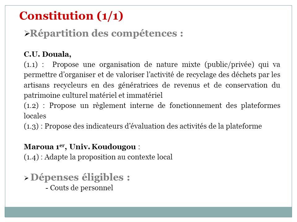 Constitution (1/1) Répartition des compétences : C.U. Douala, (1.1) : Propose une organisation de nature mixte (public/privée) qui va permettre dorgan