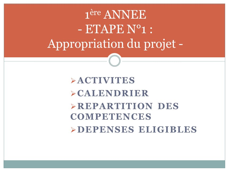 APPROPRIATION DU PROJET PAR LES ARTISANS RECYCLEURS Activités de sensibilisation Création de comités locaux « dartisans recycleurs »