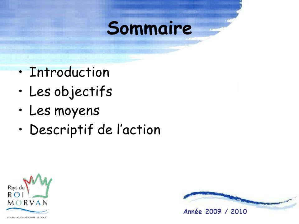 Sommaire Introduction Les objectifs Les moyens Descriptif de laction Année 2009 / 2010