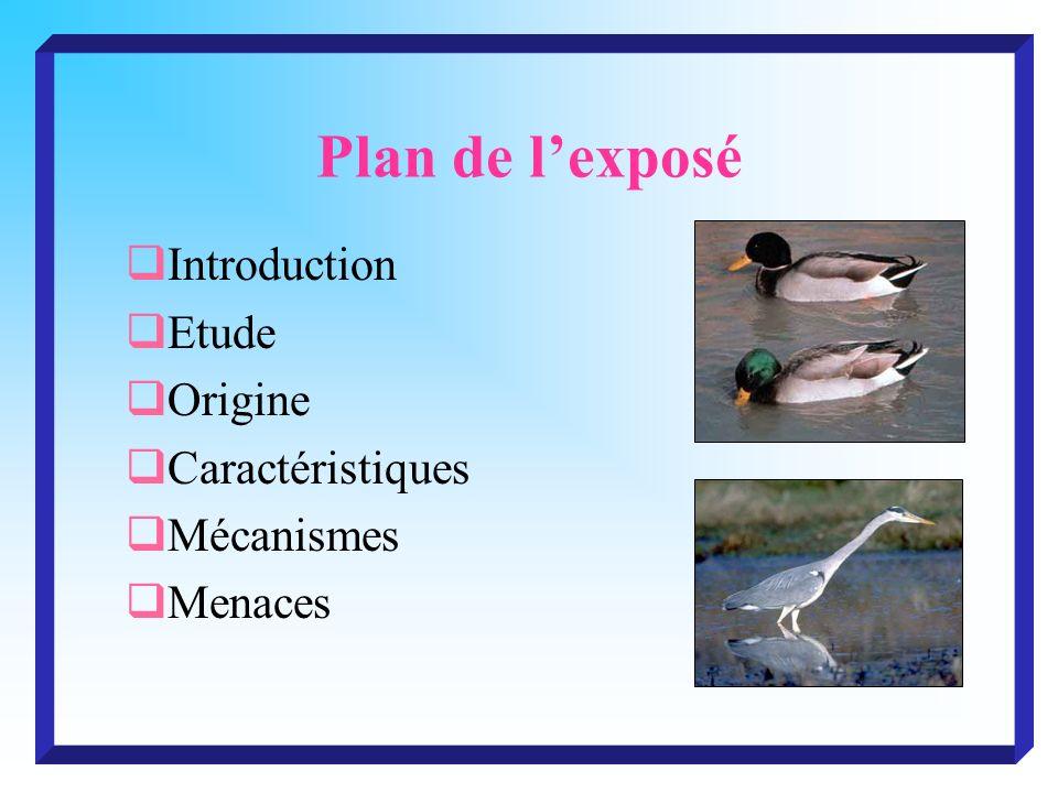Plan de lexposé Introduction Etude Origine Caractéristiques Mécanismes Menaces