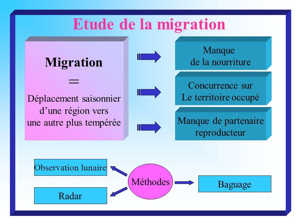Etude de la migration Migration = Déplacement saisonnier dune région vers une autre plus tempérée Manque de la nourriture Manque de partenaire reprodu